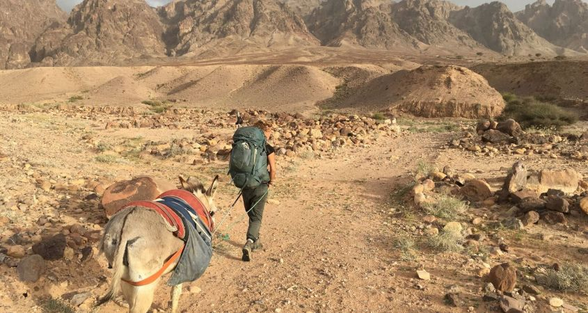 The Jordan Trail leads me and my Donkey Yustra into the desert