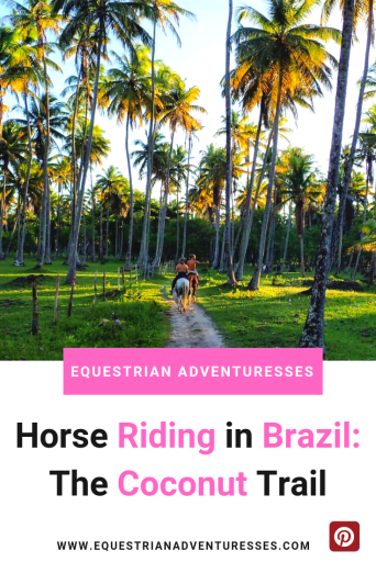 Horse Riding in Brazil: The Coconut Trail