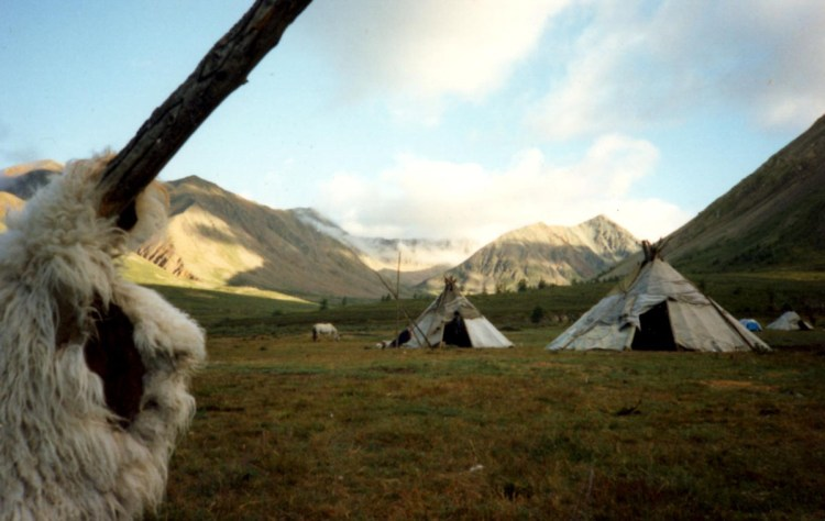 tepees in a camp of the reindeer herding tribe: Tsaatan