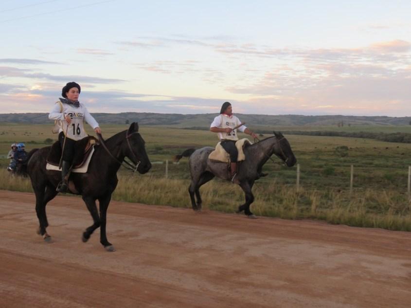 two competitors on Criollo Horses during a Marcha da Resistência