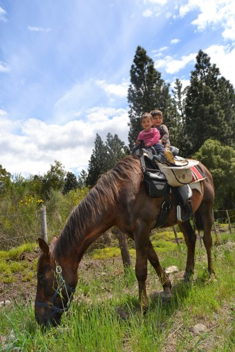 two toddlers on horseback in south america smiling in pure happiness