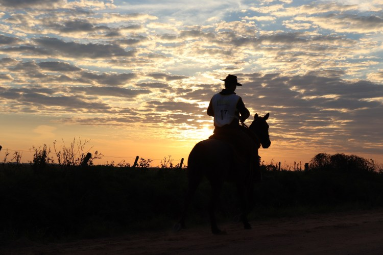 Riding into the sunrise on a Criollo Horse in Brazil