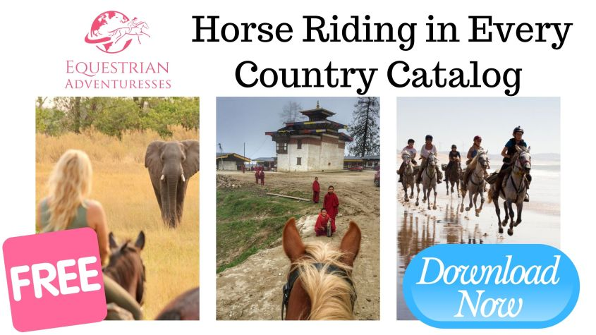 Find your next Equestrian Adventure in our free catalog with over 400 stables and tours in more than 180 countries worldwide