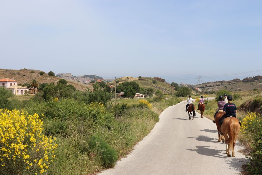 A group of tourists is riding horses in greece. The island of Lesvos is an off-the-beaten-track destination with beautiful scenery.