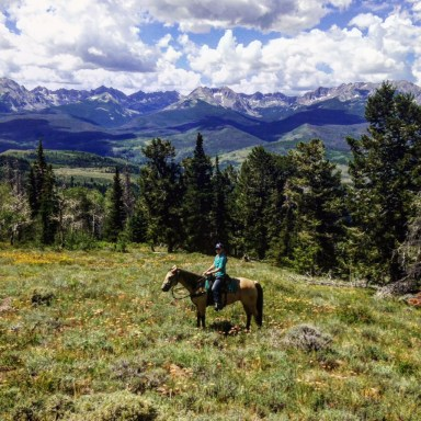 Riding a buckskin through the mountains in Colorado