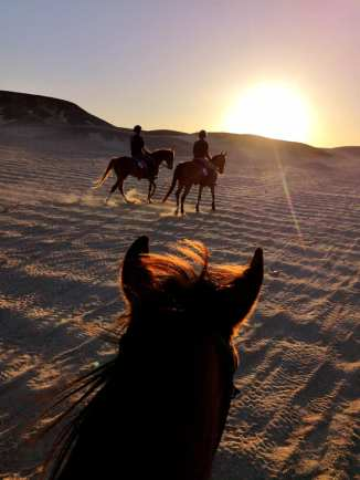 Horse riding in Egypt from the Red Sea back to Hurghada