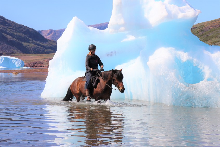 What would you do, if you were in Greenland with horses? Circle an iceberg!