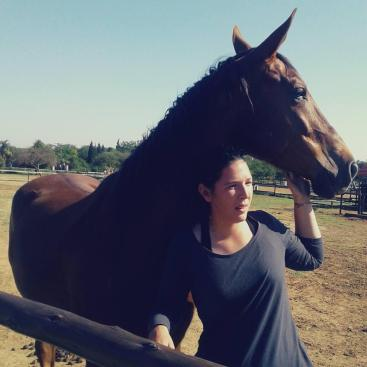 Understanding the horse body language helps you to interact with your horse in a honest and respectful way