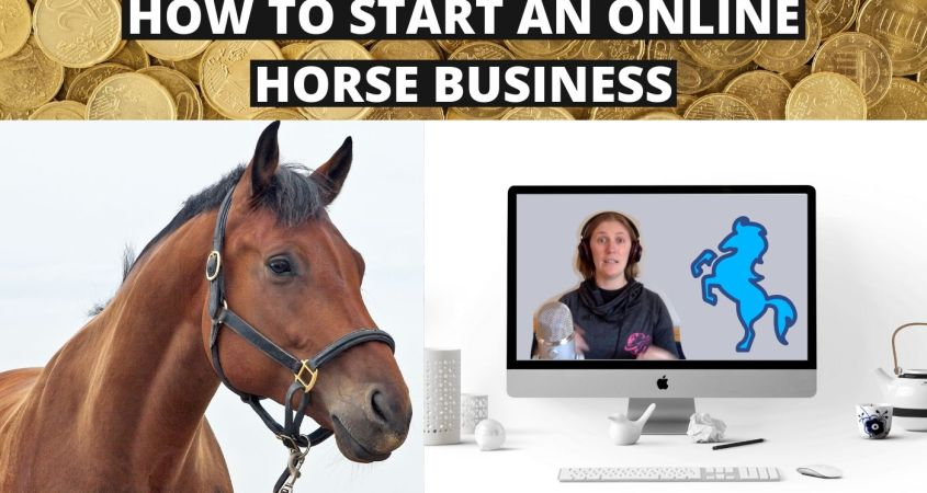 How to have an Online Business with Horses? Your Questions Answered!