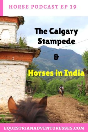 horse and travel podcast pin - Ep 19 The Calgary Stampede & Horses in India: Interview with Heather from Canada and Ute from India