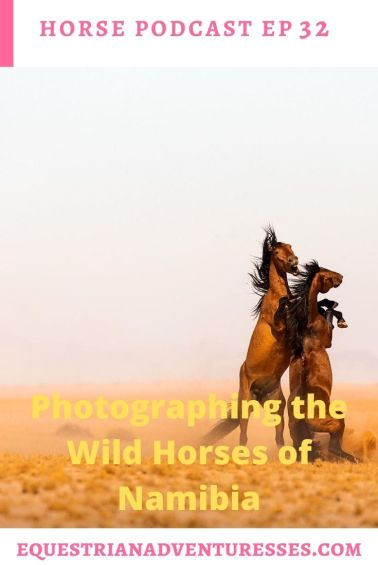 Equestrian Adventuresses Travel and Horse Podcast Ep 32 - Photographing the Wild Horses of Namibia: The Wild Horses of Namibia and the Challenges They Face