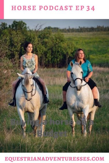Horse and travel podcast pin - Ep 34 Andalusian Horse Breeder, Trainer and Even a Farrier: Jill of all Trades - Colleen Aitken