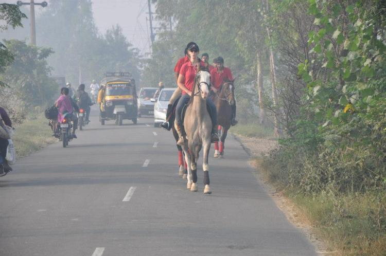 Krystal at work riding a Marwari horse on the streets of India