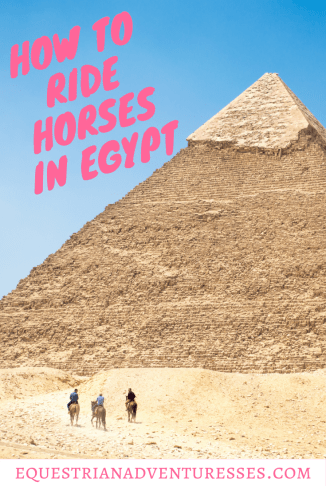 Everything you need to know when you want to go horse riding in Egypt