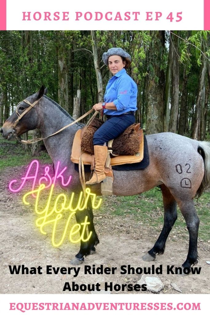 Horse and travel podcast pin - Ep 45 Ask Your Vet