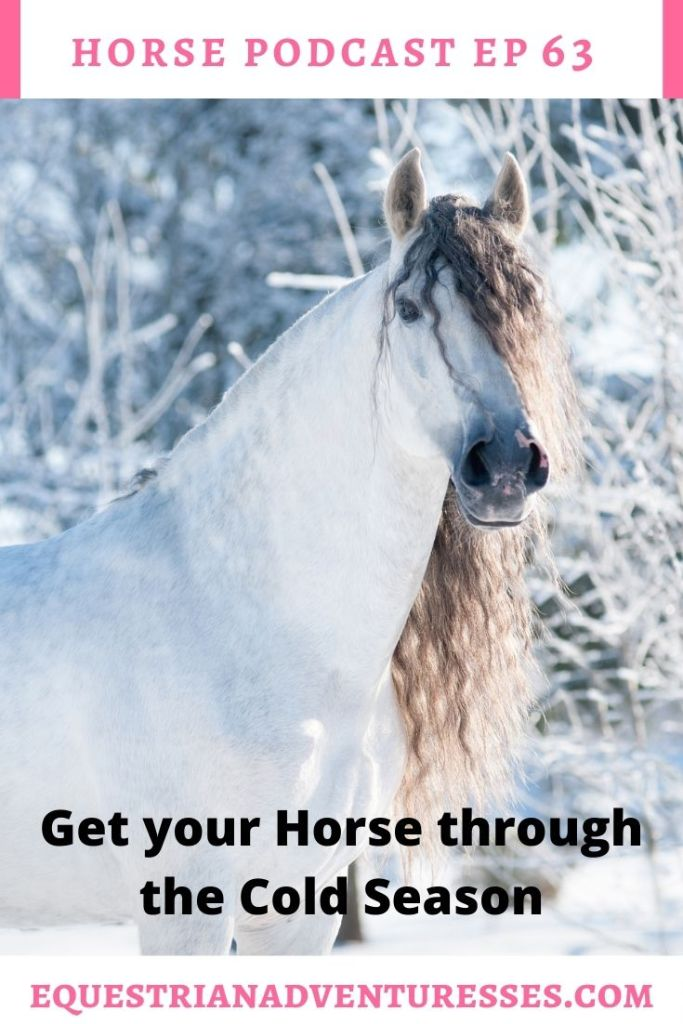 Horse and travel podcast pin - Ep 63 Horses in Winter