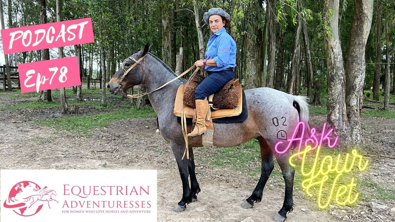 Equestrian Adventuresses Travel and Horse Podcast Ep 78 - Ask Your Vet: All About Colic