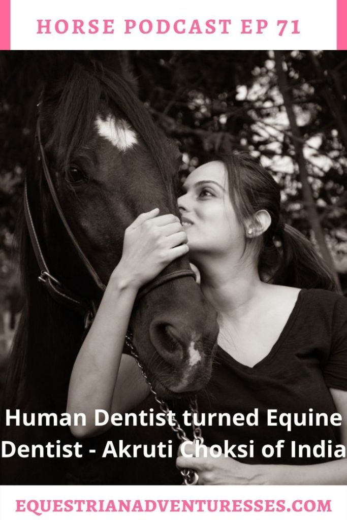 Horse and travel podcast pin - Ep 71 Human Dentist turned Equine Dentist