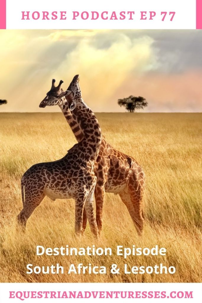 Horse and travel podcast pin - Ep 77 Destination Episode South Africa and Lesotho
