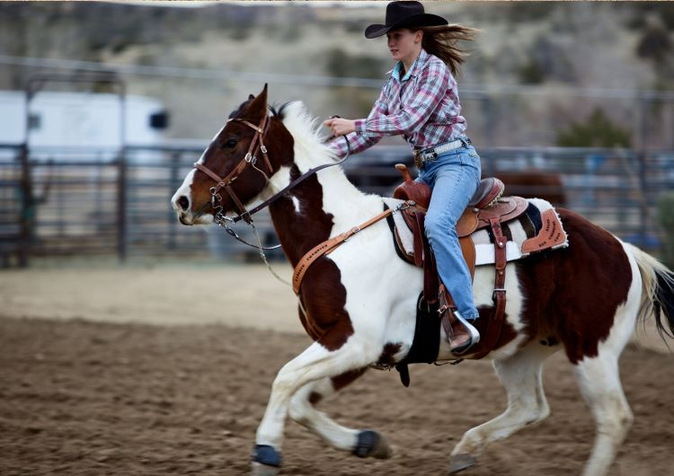 Be confident as this cowgirl! Use our courses to prepare for horseback riding in New Mexico