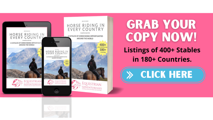 Get this catalog with over 400 stables in more than 180 countries and find the perfect horse riding holiday or horse riding vacation for you!