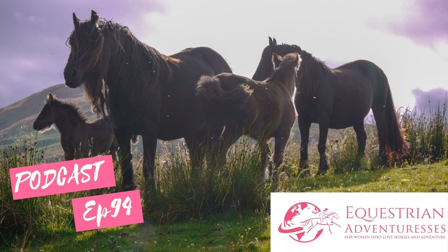 Equestrian Adventuresses Travel and Horse Podcast Ep 94 - Mountains & Moors - The Fell Pony of Cumbria