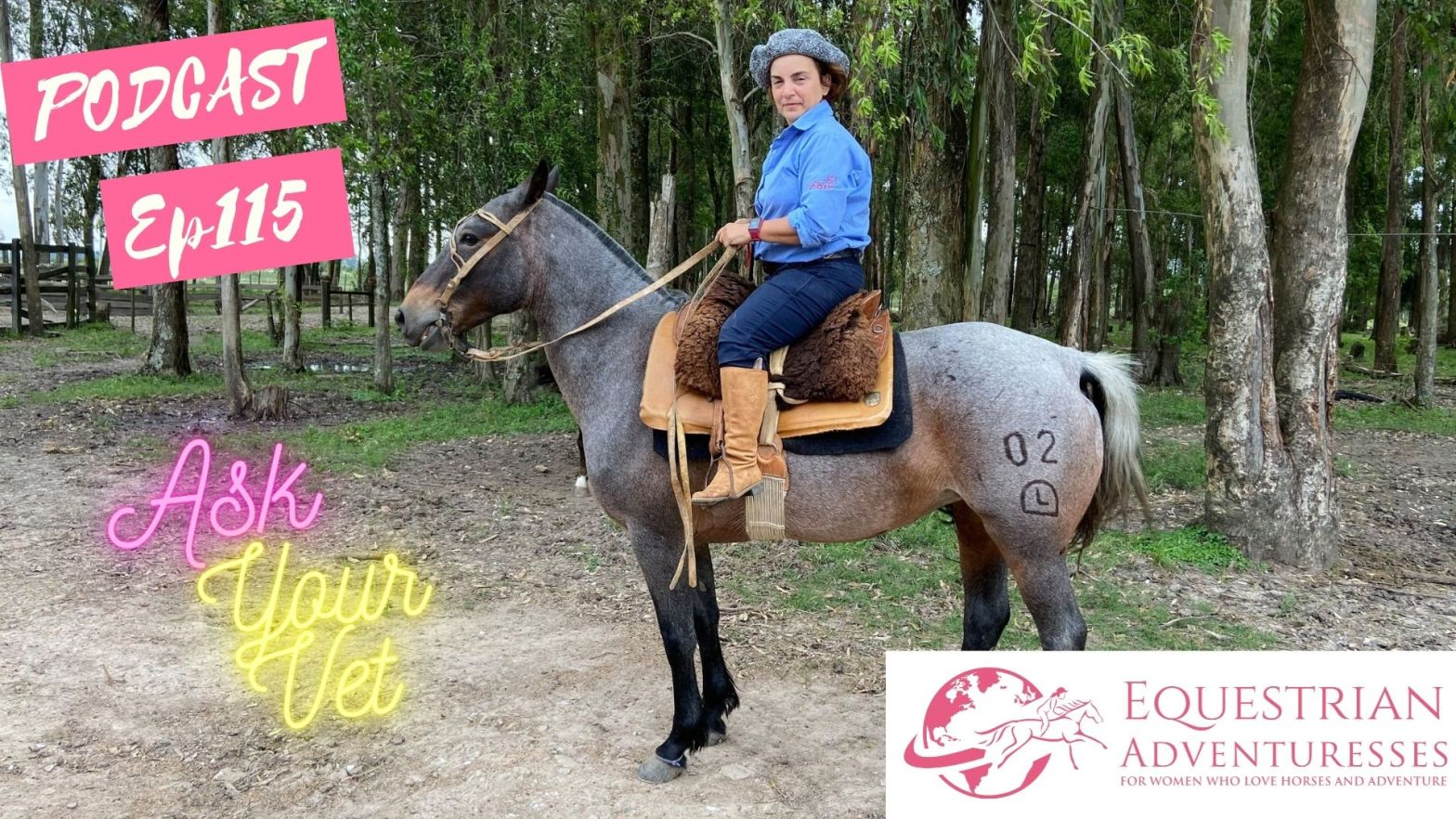 Equestrian Adventuresses Travel and Horse Podcast Ep 115 - Ask Your Vet