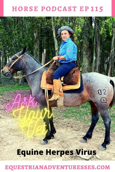 Horse and travel podcast pin - Ep 115 Ask Your Vet Equine Herpes Virus