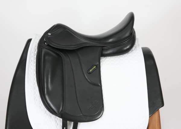 Left Side of Amerigo Vega MF Dressage 18M 14960412