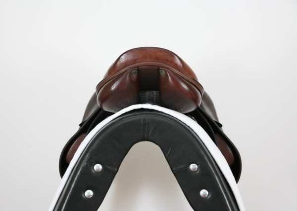 Cantle on Amerigo Vega Special Jump Saddle 18MW SN: 2618086
