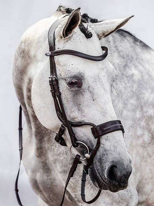 High Jump anatomical bridle Ps of Sweden