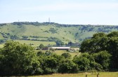 The rolling hills of the Sussex South Downs