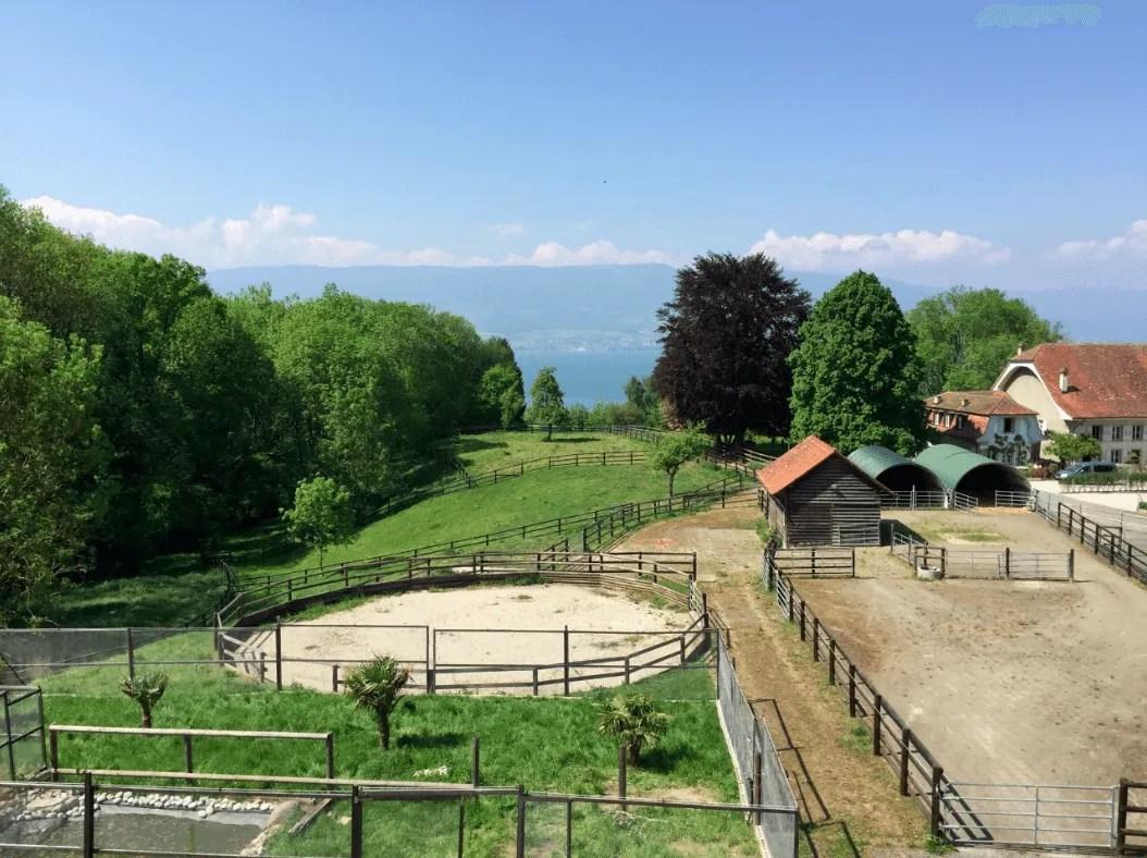 Equestrian Property for sale Châtillon, Switzerland
