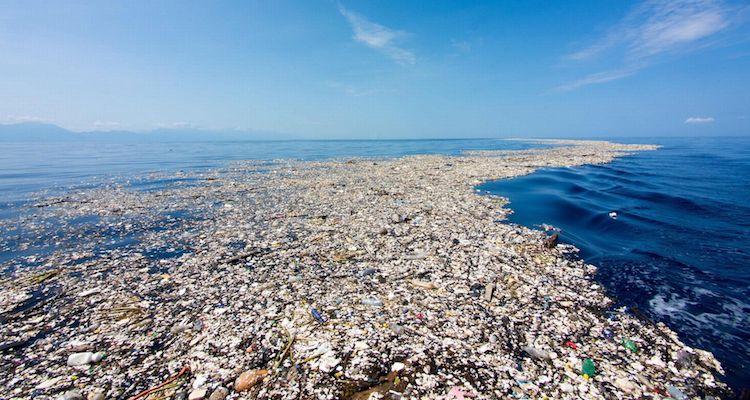 Ocean in crisis