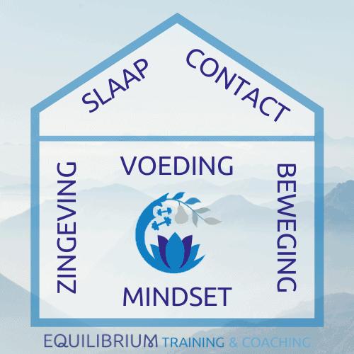 Levenshuis Slaap Contact Zingeving Voeding Mindset Beweging Ontwikkeling Evenwicht Balans