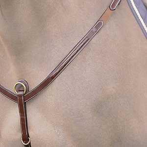 Breastplate & Martingales