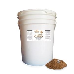 Probiotic Supplement For Horses