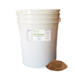 Amino Acid Supplement For Horses