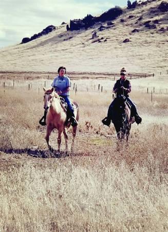Equine Challenge Supplements Refer A Friend