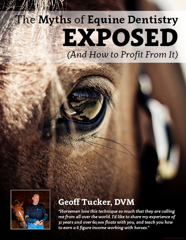 The Myths Of Equine Dentistry Exposed