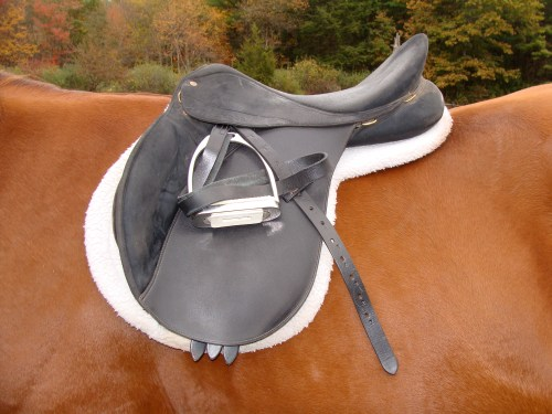 Wintec A/P Saddle