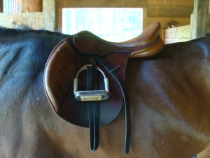 Fortune's saddle