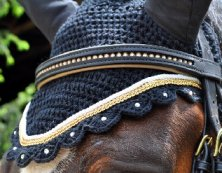A custom ear bonnet from Equine Icing runs between $50-$75.