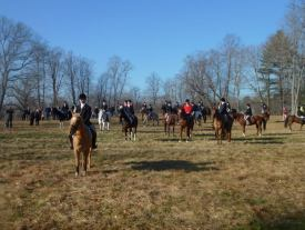 We had an excellent turnout for the Thanksgiving Hunt -- about 30+ riders.