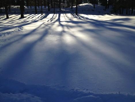 Shadows on the snow.