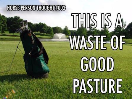 Golf vs. Pasture