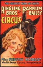 Dorothy Herbert poster