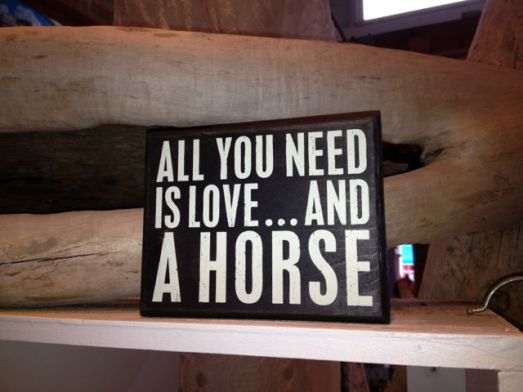 All you need is love . . . and a horse