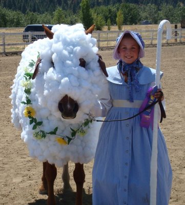 Horse dressed as sheep