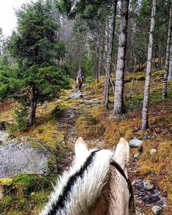 Klappene, Forde, Norway